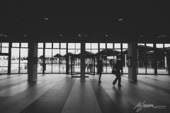 71mel-_EL_0294